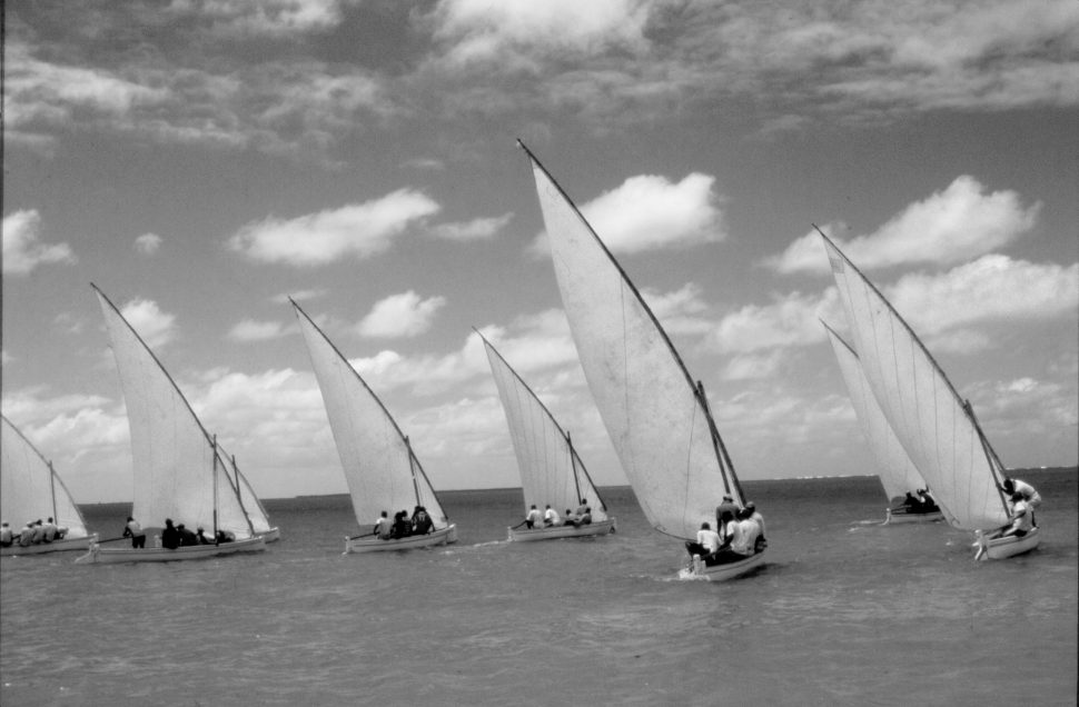 Racing sailboats, Rodrigues, Indian Ocean